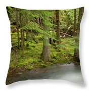 Green Eden Throw Pillow