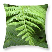 Green Fern 2 Throw Pillow