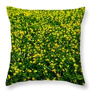 Green Field Of Yellow Flowers 3 Throw Pillow