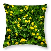 Green Field Of Yellow Flowers 4 Throw Pillow