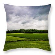 Green Fields Throw Pillow