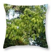 Green Fizalis Plant Throw Pillow