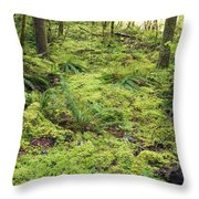 Green Foliage On The Forest Floor Throw Pillow