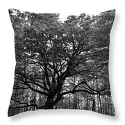 Green Giant In Black And White Throw Pillow