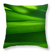 Green Grass Background In Backlight Throw Pillow