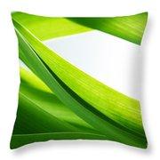 Green Grass Background Throw Pillow