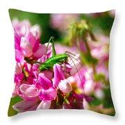Green Grasshopper On Pink Flowers Throw Pillow