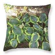 Green Hausta Cartoon Throw Pillow
