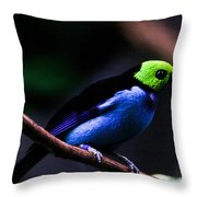 Green Headed Bird Throw Pillow