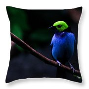 Green Headed Bird Profile Throw Pillow