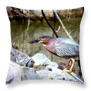 Green Heron . 7d614 Throw Pillow