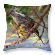 Green Heron Brazos Bend State Park Throw Pillow