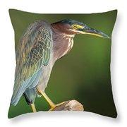 Green Heron Butorides Virescens Throw Pillow