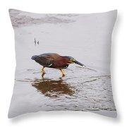 Green Heron Fishing Throw Pillow