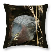 Green Heron Hunting Throw Pillow