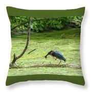Green Heron Lunch Throw Pillow