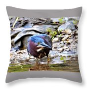 Green Heron Male Throw Pillow