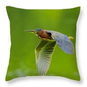 Green Heron On The Downdraft Throw Pillow