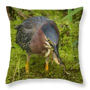 Green Heron With Prey Throw Pillow