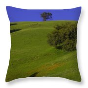 Green Hill With Poppies Throw Pillow