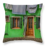 Green House And Hanging Wash_dsc5111_03042017 Throw Pillow
