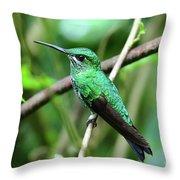 Green Crowned Brilliant Hummingbird Throw Pillow