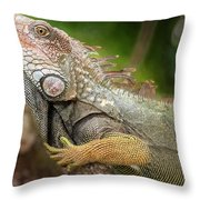 Green Iguana Costa Rica Throw Pillow