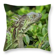 Green Iguana Vertical Throw Pillow