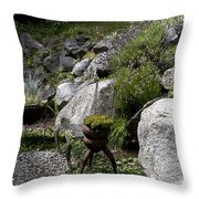 Green In Rock Garden Throw Pillow