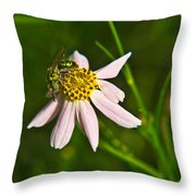 Green Iridescent Bee Throw Pillow