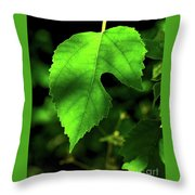 Green Is The Mulberry Leaf Throw Pillow