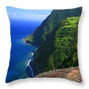 Green Island Throw Pillow