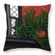 Green Ivy Garnet Brick Throw Pillow