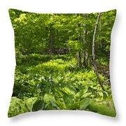 Green Landscape Of Summer Foliage Throw Pillow
