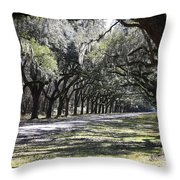 Green Lane With Live Oaks - Black Framing Throw Pillow