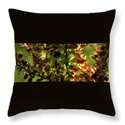 Green Leaf Red Leaf Pano Throw Pillow