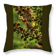 Green Leaf Spotlight Throw Pillow
