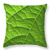 Green Leaf Structure Throw Pillow