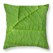 Green Leaf Texture Throw Pillow