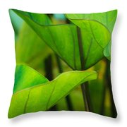 Green Leaves At Cantigny Throw Pillow