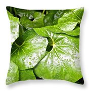 Green Leaves Longwood Garden Throw Pillow