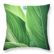 Green Leaves No. 2 Throw Pillow by Todd Blanchard