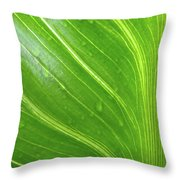 Green Living Throw Pillow