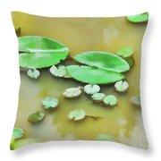 Green Lotus Leaf In The Lake Throw Pillow