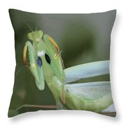 Green Mantis With Garden Background Vector Throw Pillow