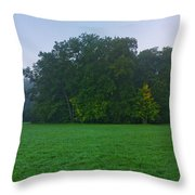 Green Meadow In Autumn Throw Pillow