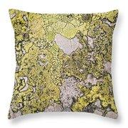 Green Moss On Rock Pattern Throw Pillow
