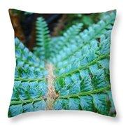 Green Nature Forest Fern Art Print Baslee Troutman  Throw Pillow