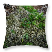 Green On Rocks Throw Pillow