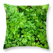 Green Parsley 1 Throw Pillow